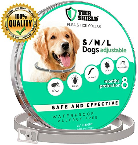 Flea and Tick Collar – Pet Essential Oil Pest Control Collars Prevention for Dogs – 8 Months Protection – Collar with Natural Plant Extracts Dog Treatment – One Size Fits All – Adjustable