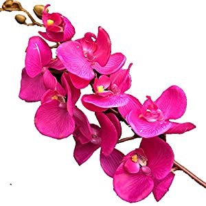 jiumengya 5pcs Latex Orchids Real Touch Orchid Fake Phalaenopsis 8 Heads Natual Looking for Wedding Party Home Centerpieces Artificial Decorative Flowers (Fuchsia) 57