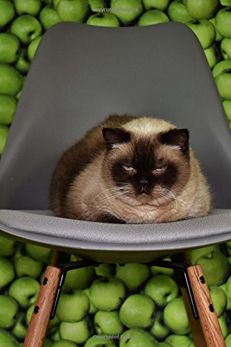 Bored Siamese Cat on a Gray Chair Pet Journal: 150 Page Lined Notebook/Diary pdf epub
