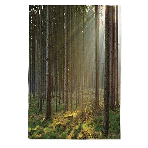 - Forest Dust Proof Tablecloth,Sunbeams Comes into Natural Misty Spruce Forest from The Right Top Picture Print for Kitchen Dinning Tabletop Decoration,72''W X 90.2''L