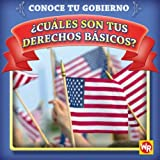 Cuales Son Tus Derechos Basicos? / What Are Your Basic Rights? (Conoce Tu Gubierno / Know Your Government) (Spanish Edition)