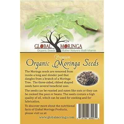 100 Moringa Oleifera Seeds ((40 Grams) FBA : Herb Plants : Garden & Outdoor