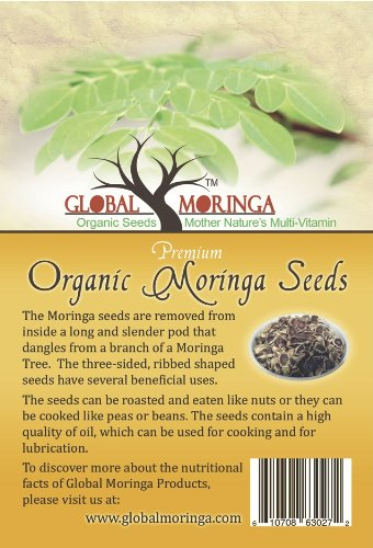 1500 Seeds - 1500 Moringa Oleifera Seeds (500 Grams)