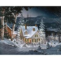 White Mountain Puzzles Friends in Winter - Rompecabezas de 1000 piezas