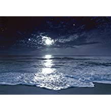 JP London MD4A126 Moonlight Beach Removable Wall Mural at 8.5-Feet Tall by 12-Feet Wide