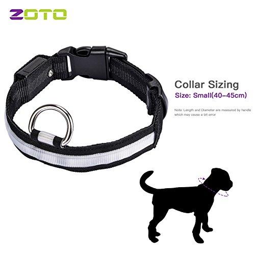 Zoto  Dog Collar