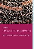 Feng Shui für Fortgeschrittene: Xuan Kong Fei Xing - Die Fliegenden Sterne Teil 1