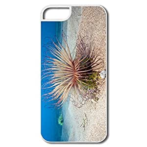 Designed Funny Safe Slide Seabed Screen IPhone 5/5s Case For Him by runtopwell