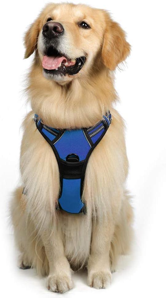 rabbitgoo Azul Arnés Perro Chaleco Antitirones Perros Seguridad ...