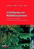 Schädigung Von Waldökosystemen : Auswirkungen Anthropogener Umweltveränderungen und Schutzmaßnahmen, Elling, Wolfram and Heber, Ulrich, 3827430690