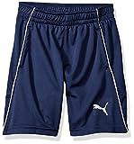 PUMA Little Boys' Maddox Shorts, Peacoat, 6