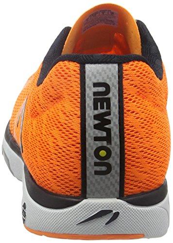 Newton Men Orange Course V orange De blue Distance Chaussure 6xqTRT