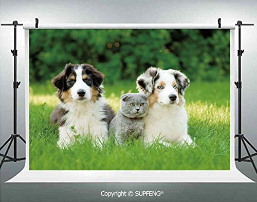 Background Cute Pets Puppy Family in The Garden Australian Shepherds and A Cat Scenery Decorative 3D Backdrops for Interior Decoration Photo Studio Props ()