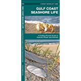 Gulf Coast Seashore Life: A  Folding Pocket Guide to Familiar Plants and Animals (Pocket Naturalist Guide Series)