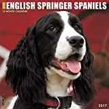 Just English Springer Spaniels 2017 Wall Calendar (Dog Breed Calendars)