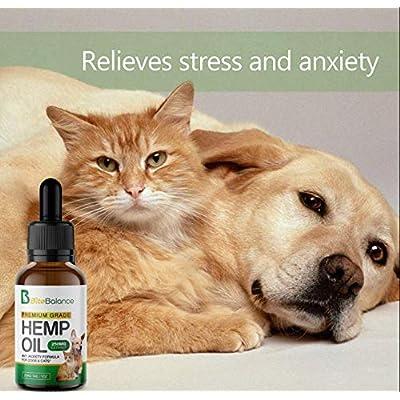 Hemp Oil For Cats, 51Crev9AiVL. SS400