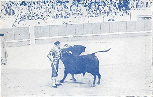 Bullfighting Tarjeta Postal Bullfighting Postcard Non ...