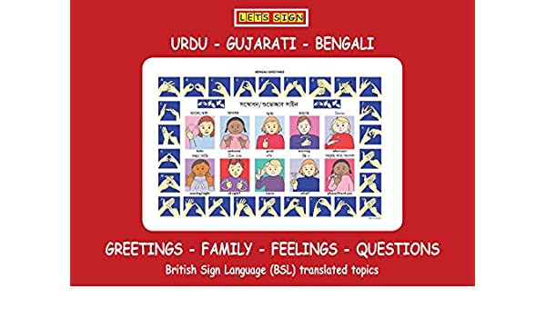 Amazon com: BSL Greetings, Family, Feeling & Questions Signs with