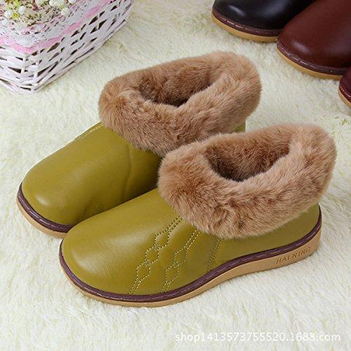 scarpe caffè inverno fine pantofole Pu ricamo Nuova tendine tendine grassyellow casa cotone in borsa spessa coppia con caldo qwatxIP1