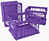 Storex Standard Letter/Legal File Crate, 17.25 x 14.25 x 11.2 Inches, Purple, Case of 3 (STX61660U03C)