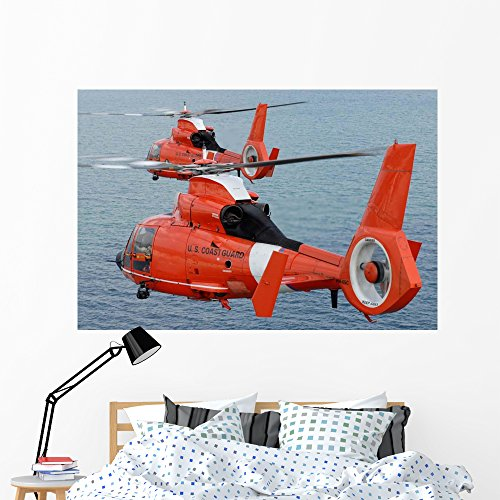 Wallmonkeys Two Coast Guard Hh-65c Wall Mural Peel and Stick Graphic (60 in W x 40 in H) WM33466