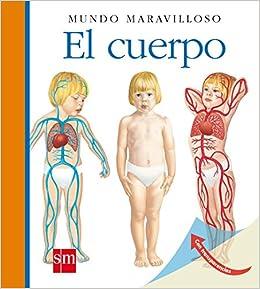 El cuerpo (Mundo maravilloso): Amazon.es: Peyrols