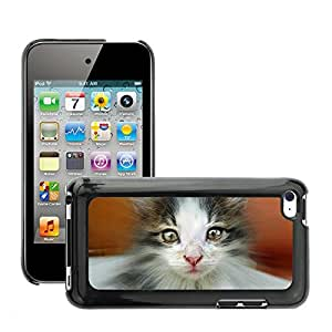 Cas Coq Case Cover // M00147120 Rayos Cat Animal Mieze Adidas Cara // Apple ipod Touch 4 4G 4th