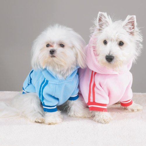 Casual Canine™ Sporty Fleece Pullover - Extra Small - Sporty Fleece Pullover Dog Apparel