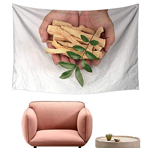 - alsohome Bedroom Tapestry Wall Hanging Square Tapestry for Living Room Tongkat Ali Eurycoma Longifolia Jack 84