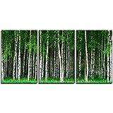 wall26 - 3 Piece Canvas Wall Art - Beautiful Swedish Summer Landscape with Grove of Birch Trees - Modern Home Art…