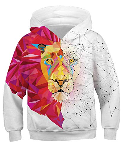 KIDVOVOU Boys Girls 3D Print Graphic Sweatshirts Long Sleeve Cotton Pullover Hoodies with Pocket,Painting Lion,12-14 Years
