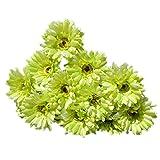 Artificial Flower Gerbera - SODIAL(R) 10 PCS Artificial Silk Gerbera Daisy Flower Wedding Party Home Bridal Bouquet Green