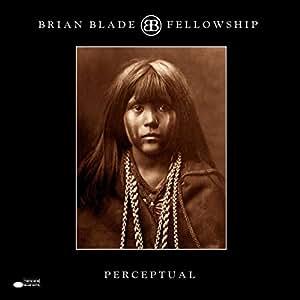 Perceptual [2 LP]