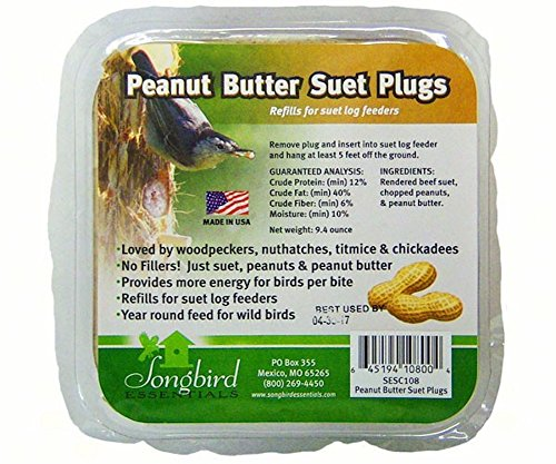Songbird Essentials SESC108 Suet Plugs Peanut Butter Bird (Peanut Butter Bird Food)