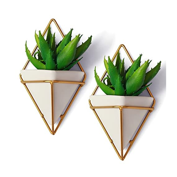 """California Home Goods Modern Hanging Planter Pots (2-Pack), Small Decorative Wall Planters for Cactus Decor & Hanging Plants, Wall Hanging Ceramic Planter with Brass Wire Frame, White Plant Decor - MODERN HANGING DECOR PERFECT FOR INDOOR HOUSEPLANTS: Measuring 4.5"""" x 2.75"""" x 7.25"""" per hanging pot, the geometric plant pots or white small hanging pots can house a variety of mini succulents like cactus, moss, foliage, echeveria, haworthia, aloe, and more. Not having a green thumb is no excuse-- this geometric wall decor is also perfect to place faux air plants or artificial succulents. There's nothing that screams good taste like your own personal hanging wall terrarium. EASY TO INSTALL WALL HANGING PLANTERS: Our decorative planter set is complete with the screws you need to easily install the geometric vases onto your lonely walls. Because the brass wire frame holds and keeps the geometric pot against your wall, it's so easy to clean and re-arrange as often as you want to. And should you want to change the hanging plants, simply pull the mini vase from the brass frame - no need to unscrew and re-screw. GEOMETRIC HANGING VASES THAT'LL LIVE UP TO YOUR EXPECTATIONS: Here at California Home Goods, we are so confident in the quality of our products that we provide a money-back to ensure your satisfaction; and that includes our Modern Wall Hanging Planters. If in case you're unhappy with your purchase of our geometric wall vases, simply reach out to us within 30 days so we could improve your overall experience. - living-room-decor, living-room, home-decor - 51CsCUYAwuL. SS570  -"""