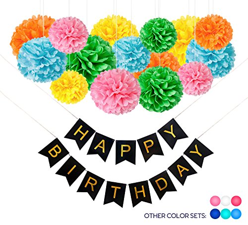 16 DIY Rainbow Birthday Decorations: 15 Large Tissue Paper Pom Poms + 1 Happy Birthday Banner. Birthday Party Decoration Supplies for Kids, Boys and Girls. Fiesta, Jungle, Flower, Circus Party Themes - Jungle Blue Paper