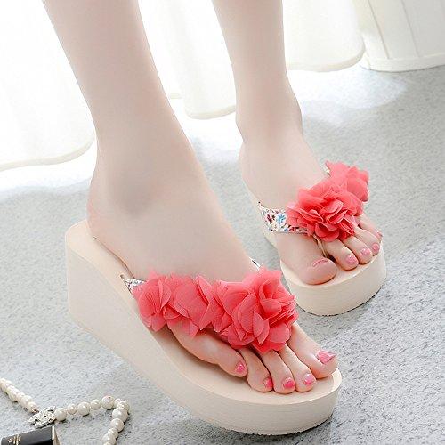 Mujeres Señoras Sandalias Pantuflas de los deslizadores de la manera Zapatos femeninos de los altos talones de la playa Sandalias con 5 colores para 18-40 años Cómodo ( Color : 1003 , Tamaño : 36 ) 1003