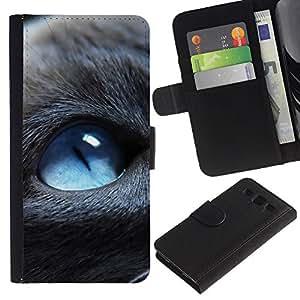 Stuss Case / Funda Carcasa PU de Cuero - Blue Eyed Cat - Samsung Galaxy S3 III I9300