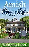 Amish Buggy Ride (Amish Gardens) by  Samantha Fisher in stock, buy online here