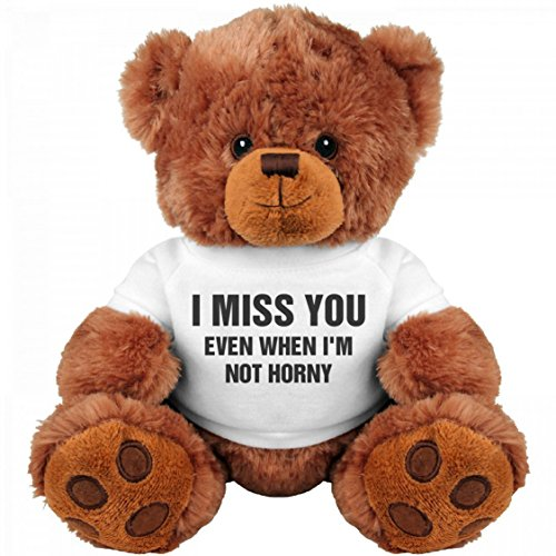 Funny Teddy Bear Couple Gift: Medium Teddy Bear Stuffed Animal : I Miss You