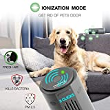 Portable Ozone Generator Air Purifier - Air Cleaner Ionizer Air Purifier for Home - Rechargeable Anti-Microbial Ionizer for Car Kitchen Fridge Hotel - Dark Grey