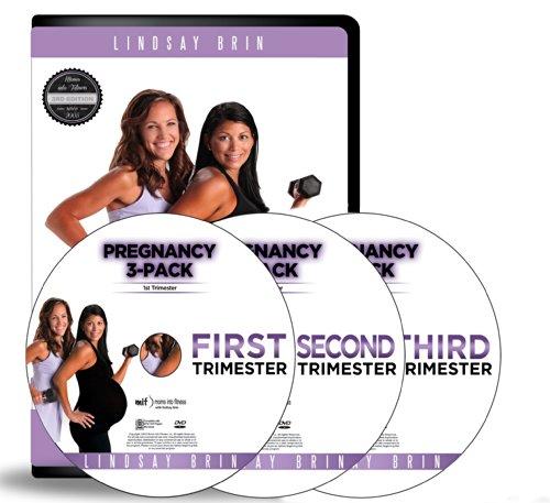 Lindsay Brin: Complete Pregnancy Workout (Pregnancy Cardio Workout Dvd)