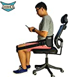 Posture Correcting Lumbar Support with Adjustable Straps Keeps Back Straight Suitable in Office ,At Home ,Outdoors
