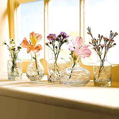 Petite Cut Glass Bud Vases - Set of 5 Different Shapes in Clear or Jewel Tones