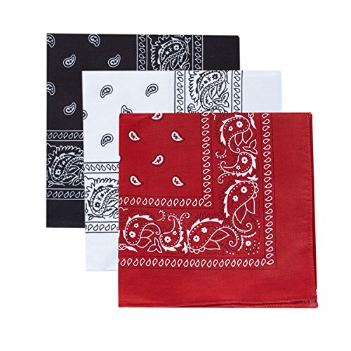 3Colors of Paisley Print Cotton Bandanas 22 Inch, pack of 3 ()