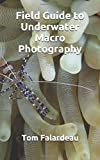 Field Guide to Underwater Macro Photography