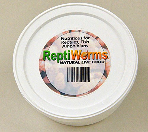 Animal Specialties BSF – Black Soldier Fly Larvae – Reptiworms Brand (1500 Count – Small) - A Nutritious Reptile (Bearded Dragon, Leopard Gecko, Crested Gecko, etc), Amphibian, Fish, Bird Food. by Animal Specialties (Image #4)