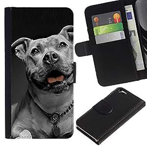American Bulldog White Black Collar Dog - la tarjeta de Crédito Slots PU Funda de cuero Monedero caso cubierta de piel Apple (4.7 inches!!!) iPhone 6 / 6S