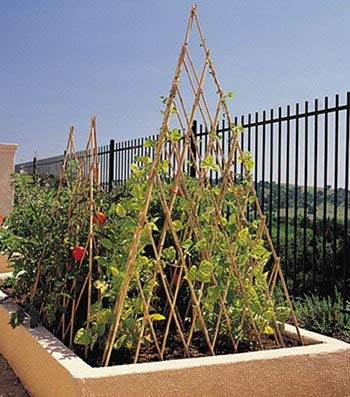 Natural Bamboo Poles Teepee, 48'' H, Natural Finished BT-48