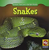 Snakes (Animals That Live in the Rain Forest)